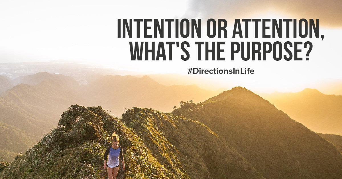 intention or attention driven, what's the purpose?
