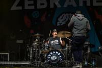 zebrahead-11