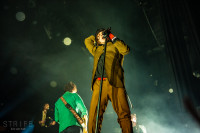cage-the-elephant-14