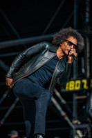 rock-am-ring-alice-in-chains-6