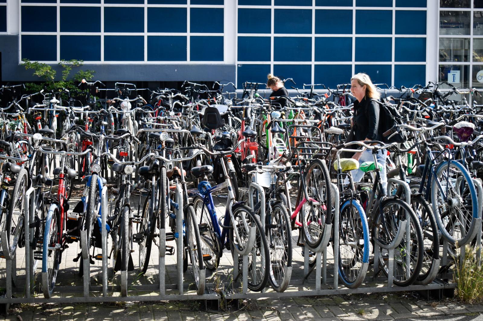 Colored bikes in Amsterdam 1