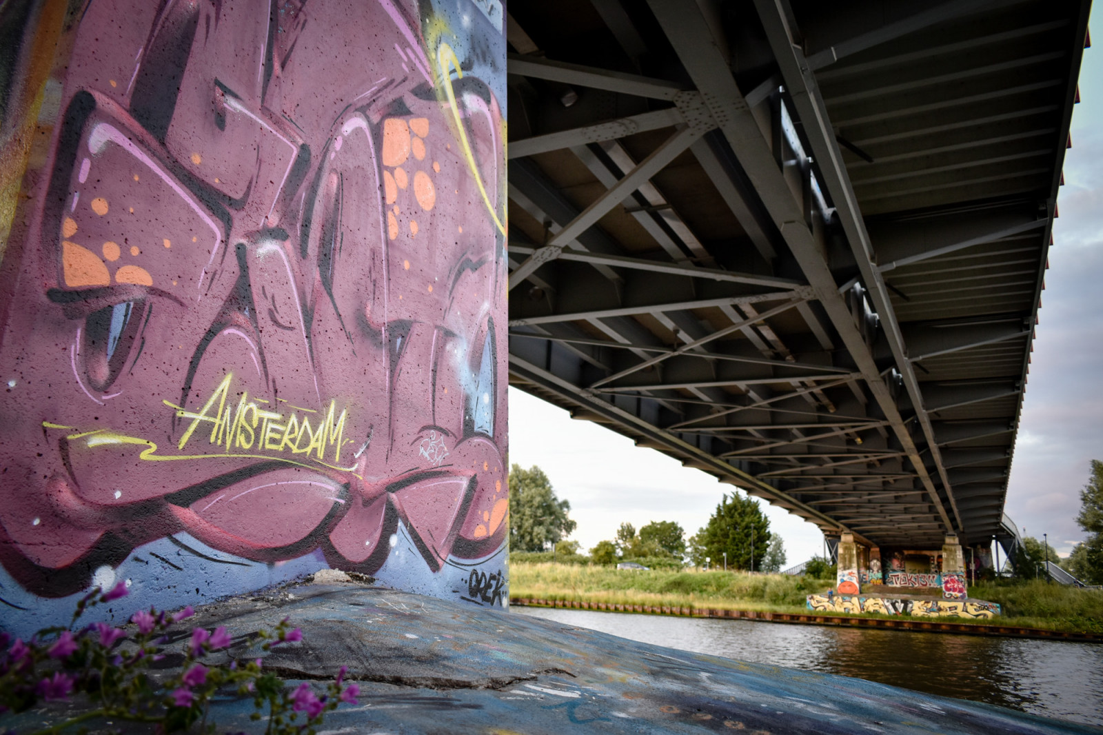 Graffiti under bridge in Amsterdam