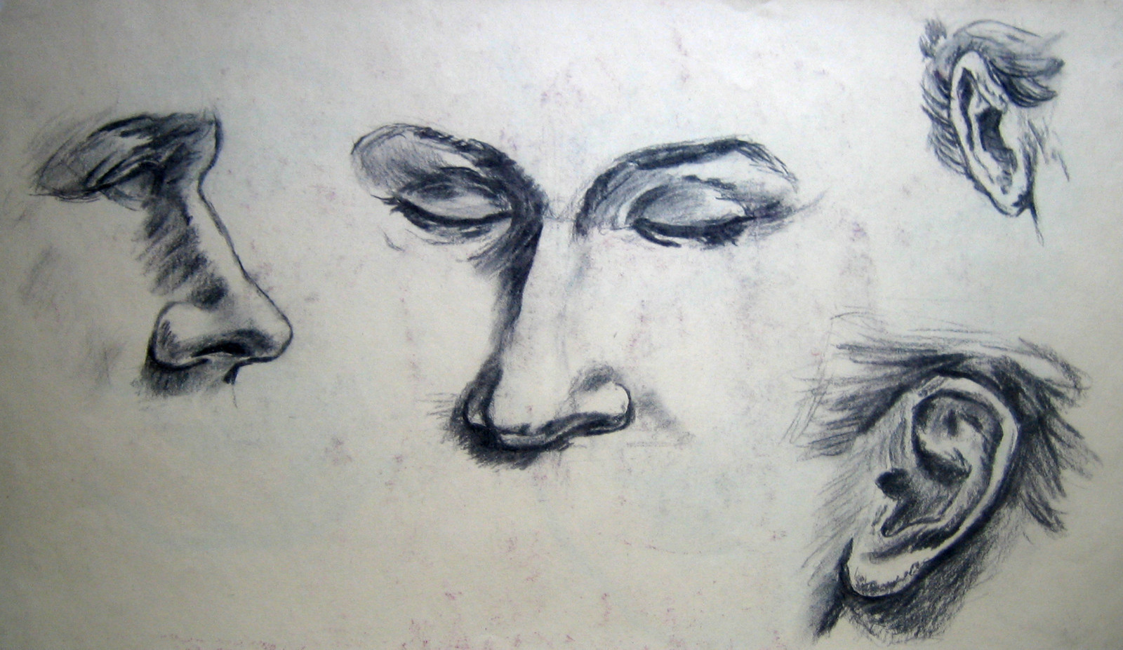 practise-noses-and-ears-drawing-with-coal