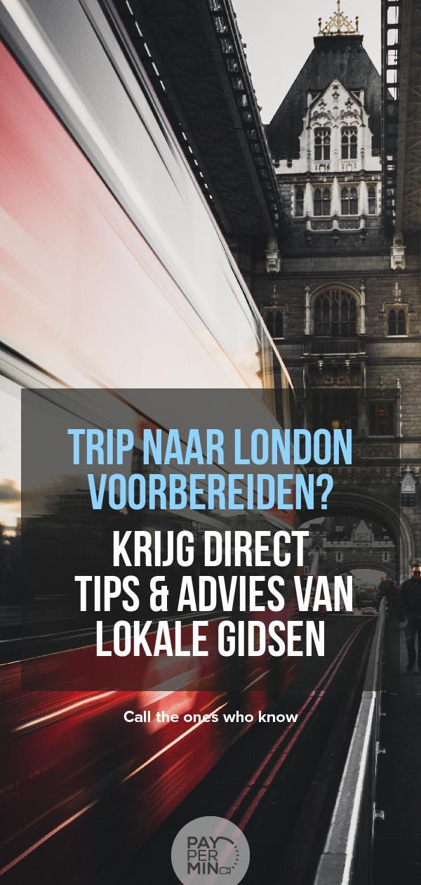 Lokale Gidsen In Londen Zijn Direct Via Live Video