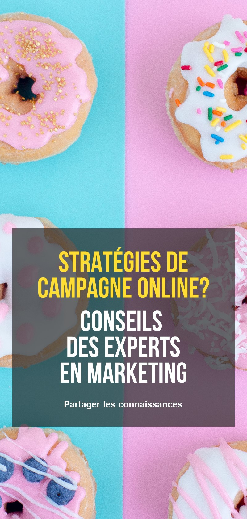Conseils de marketing des influenceurs