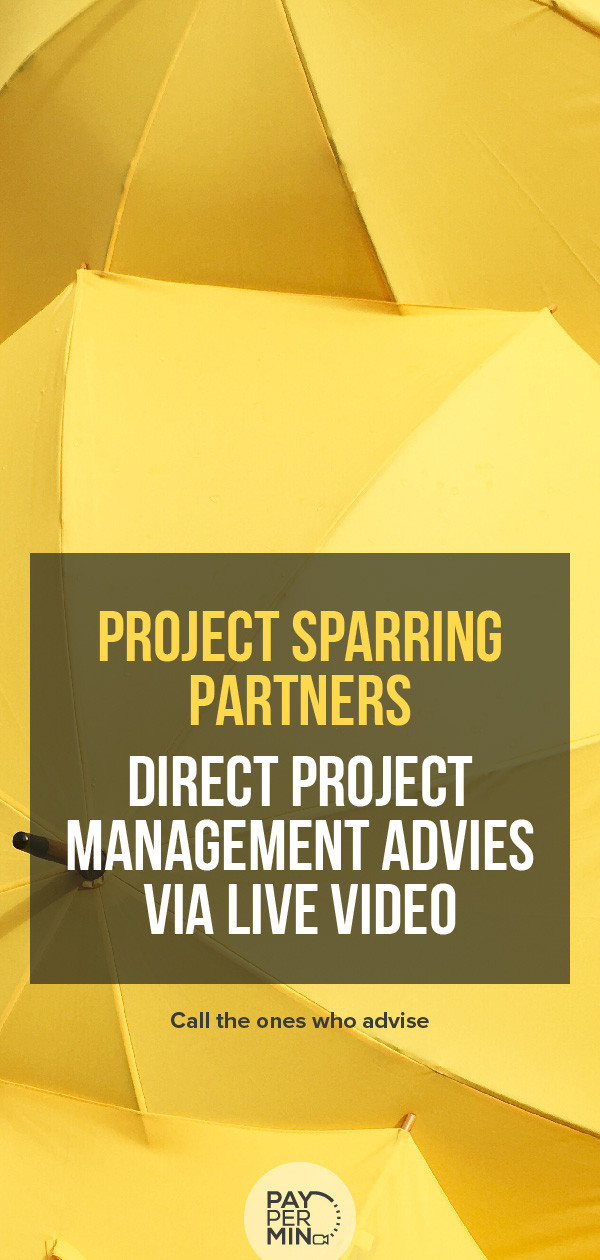 project-management-advies